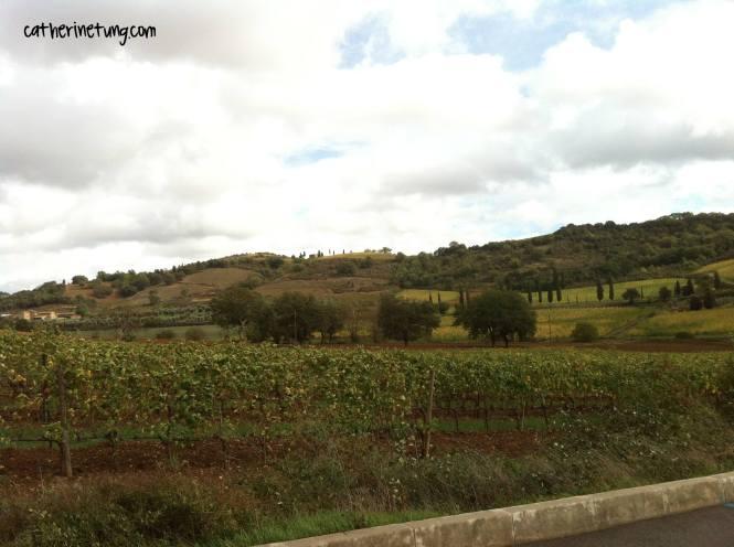 tuscanycatherinetung.com